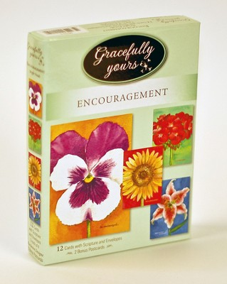 Bright Petals Encouragement Cards, Box of 12   -     By: Wendy Darker