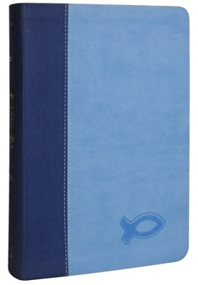 KJV Study Bible for Boys, Duravella, Duotone, blue/light blue - Imperfectly Imprinted Bibles  -