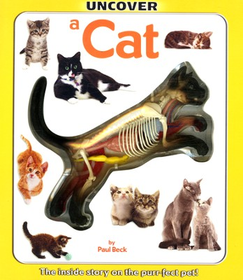 Uncover A Cat The inside story on the purr-fect pet!  -     By: Paul Beck