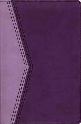 KJV Reference Bible--soft leather-look, plum/lavender   -