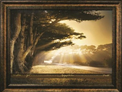 Arise, Shine, for Your Light Has Come--Framed Print   -