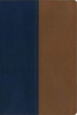 NIV and KJV Side-by-Side Bible, Large Print,   Italian Duo-Tone, Navy/Tan  -