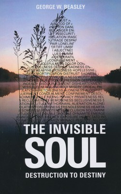 The Invisible Soul: Destruction To Destiny  -     By: George W. Beasley