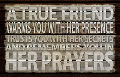 A True Friend Warms You With Her Presence Plaque  -