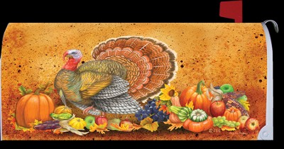 Turkey Give Thanks Mailbox Cover  -     By: Mary Lou Troutman