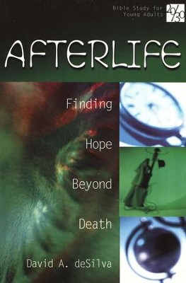 20/30 Bible Study for Young Adults:  Afterlife                                -     By: David A. deSilva