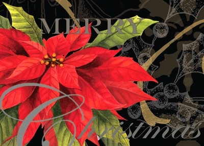 Christmas Poinsettia Deluxe Box Christmas Cards, Box of 20  -