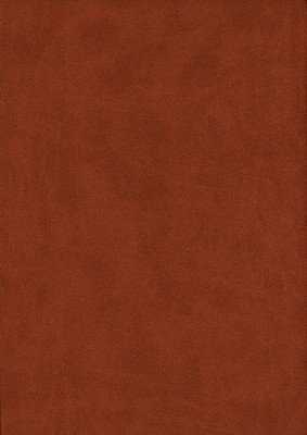 KJV Thompson Chain-Reference Bible, Medium Brown Mirage Softcover  -