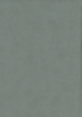 KJV Thompson Chain-Reference Bible, Graphite Mirage Softcover  -