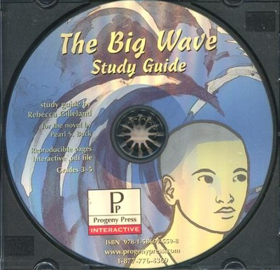 The Big Wave Study Guide on CDROM   -
