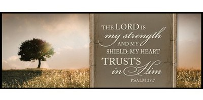 The Lord Is My Strength Mini Mounted Print   -