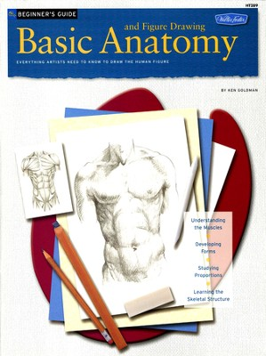Beginner's Guide: Basic Anatomy And Figure Drawing  -