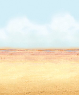 Desert Sky Backdrop (4 Feet x 30 Feet)   -