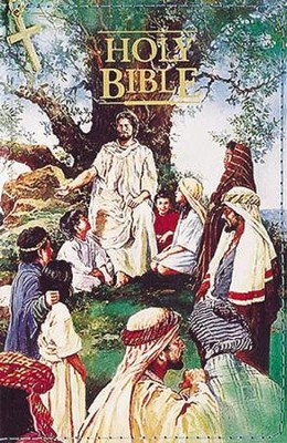 KJV Seaside Bible, Hardcover with zipper   -