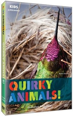 Quirky Animals! DVD  -