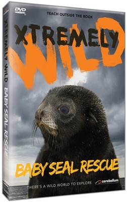 Baby Seal Rescue DVD  -