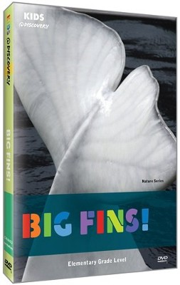Kids @ Discovery: Big Fins! DVD   -