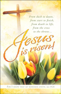 Jesus is Risen (Job 19:25) Bulletins, 100  -