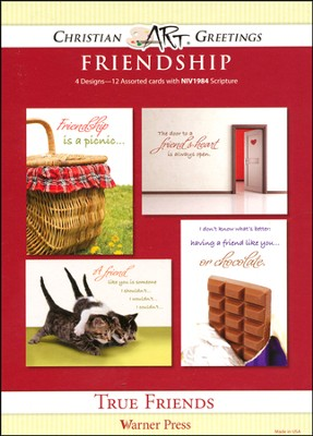 True Friends, Box of 12 Assorted Friendship Cards  -