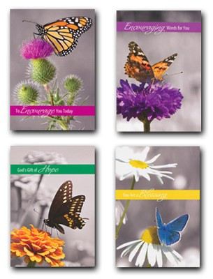 Butterfly Gardens, Box of 12 Assorted Encouragement Cards  -