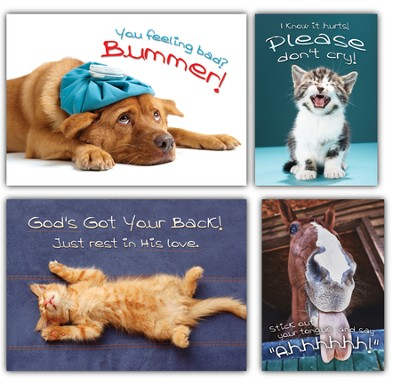 Fuzzy Friends, Box of 12 Assorted Get Well Cards  -