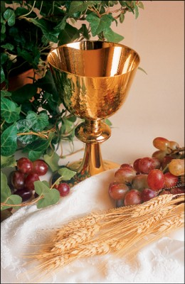 Chalice, Grapes, Wheat, Ivy, Bulletins, 100  -