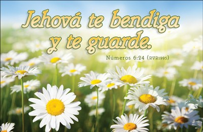 Jehova te Bendiga y te Guarde (Numbers 6:24, RVR) Postcards, 25  -