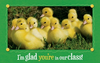 I'm Glad You're in Our Class, Postcards, 25  -