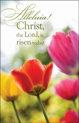 Christ the Lord Is Risen Today, Bulletins, 100  -