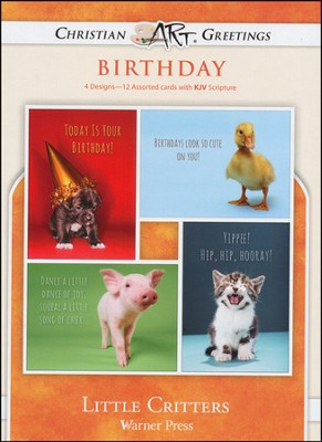 Little Critters, Box of 12 Assorted Birthday Cards  -