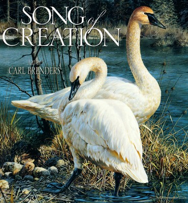 Song of Creation   -     By: Illustrated by Carl Brenders     Illustrated By: Carl Brenders