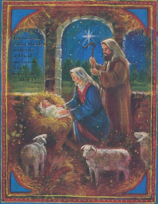 For Unto You is Born Christmas Cards, Box of 18  -     By: Stewart Sherwood
