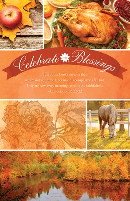Celebrate the Blessings, The Lord's Mercies (Lamentations 3:22-23) Bulletins, 100  -