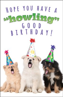 Howling Good Time (Philippians 4:4, NIV) Birthday Postcards, 25  -