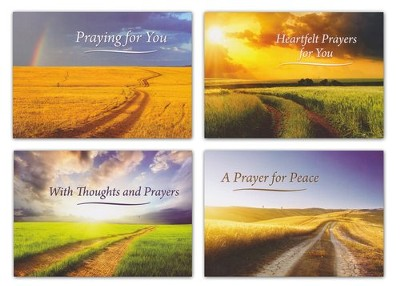 Still Praying, Box of 12 Assorted Praying for You Cards  -