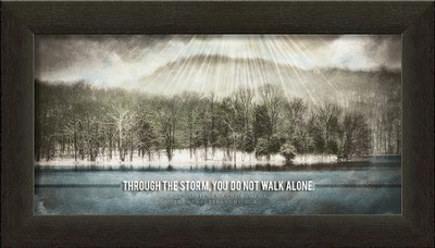 Through the Storm, You Do Not Walk Alone Framed Art  -