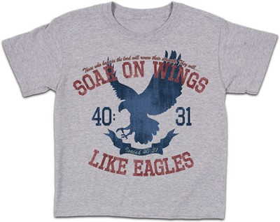 Soar On Wings Shirt, Gray, Youth Large  -