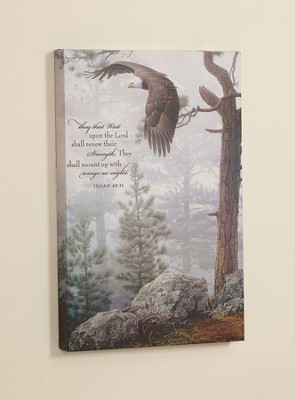 They That Wait Upon the Lord, Eagle Framed Art  -     By: Danile Smith