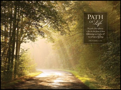 The Path of Life Mounted Print  -