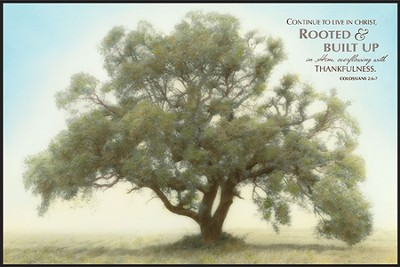 Rooted & Built Up, Mounted Print   -     By: William Guion
