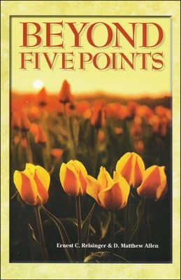 Beyond Five Points   -     By: Ernest C. Reisinger, D. Matthew Allen