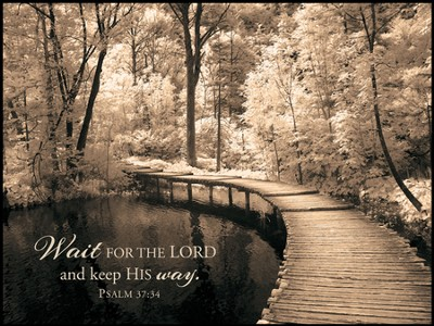 Wait For the Lord Mounted Print  -     By: Ily Szilagyi