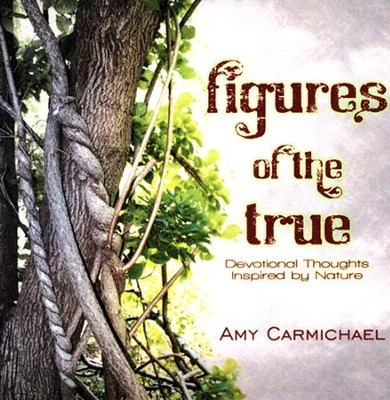 Figures of the True  -     By: Amy Carmichael