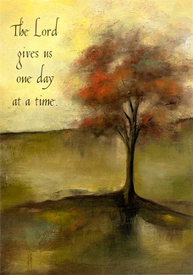 One Day at a Time Encouragement Cards, Box of 12  -