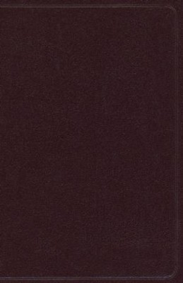 NAS Thinline Bible, Bonded leather, Burgundy   -
