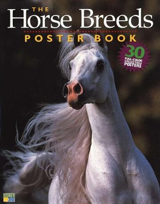 The Horse Breeds Poster Book   -     By: Lisa H. Hiley
