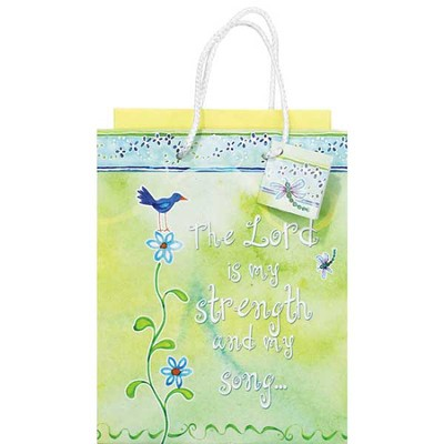 The Lord Is My Strength Gift Bag, Small  -     By: Audrey Jeanne Roberts
