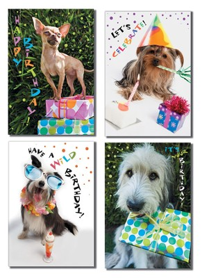 Dogs Design Birthday Cards, Box of 12   -