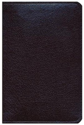 NAS Compact Reference Bible, Bonded leather, Burgundy   -