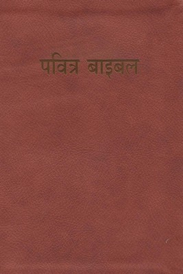 Hindi BibleL-Easy-To-Read, Paper, Red/Tan  -